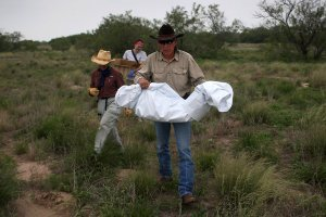 border dead body