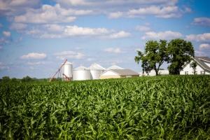wpid-farmland-indiana5.jpg